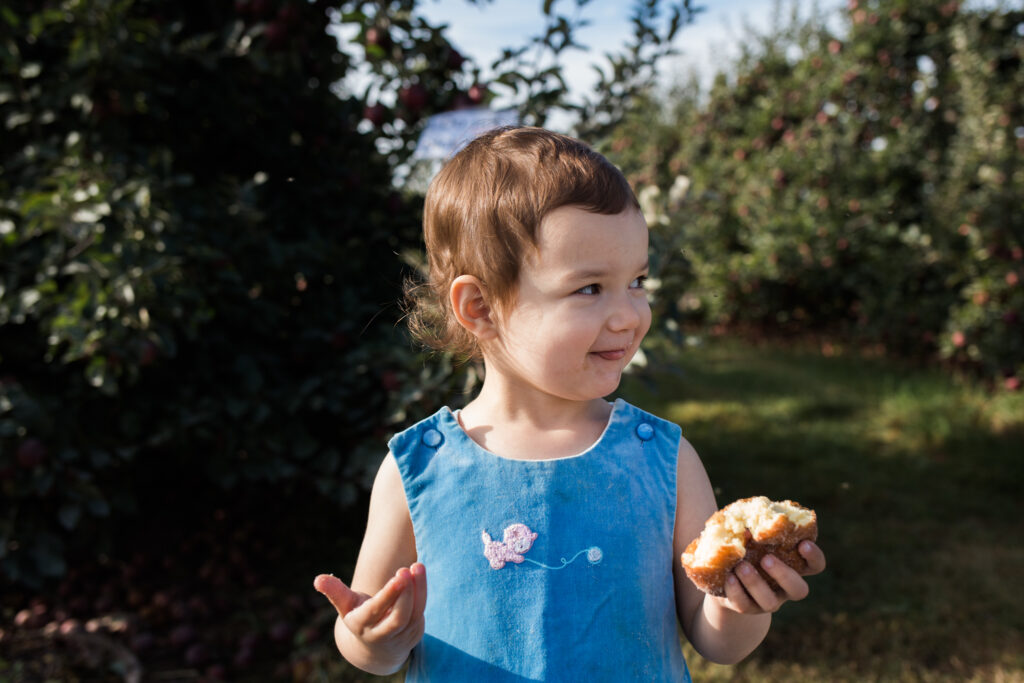 Apple cider donut - Apple picking